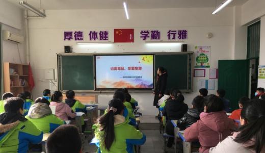 郑州学校开展禁毒主题队会 增强学生防毒拒毒能力